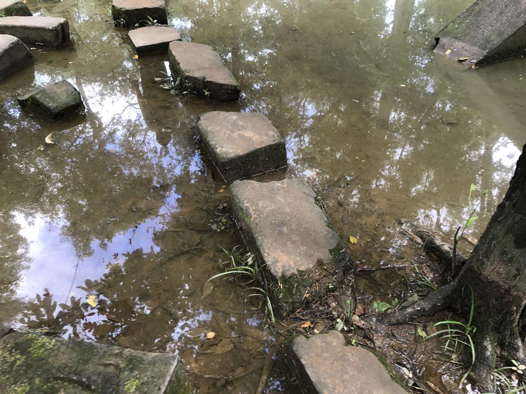ベンメリア池
