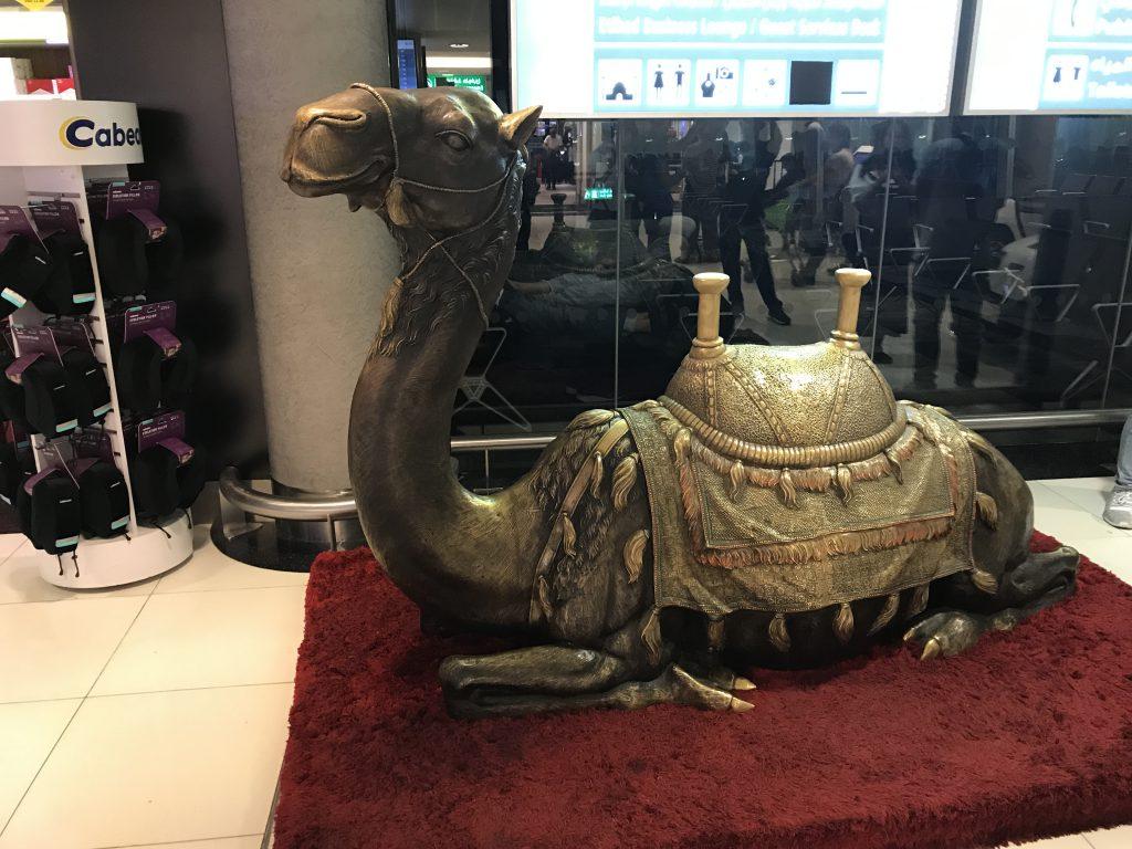 アブダビ国際空港ラクダ