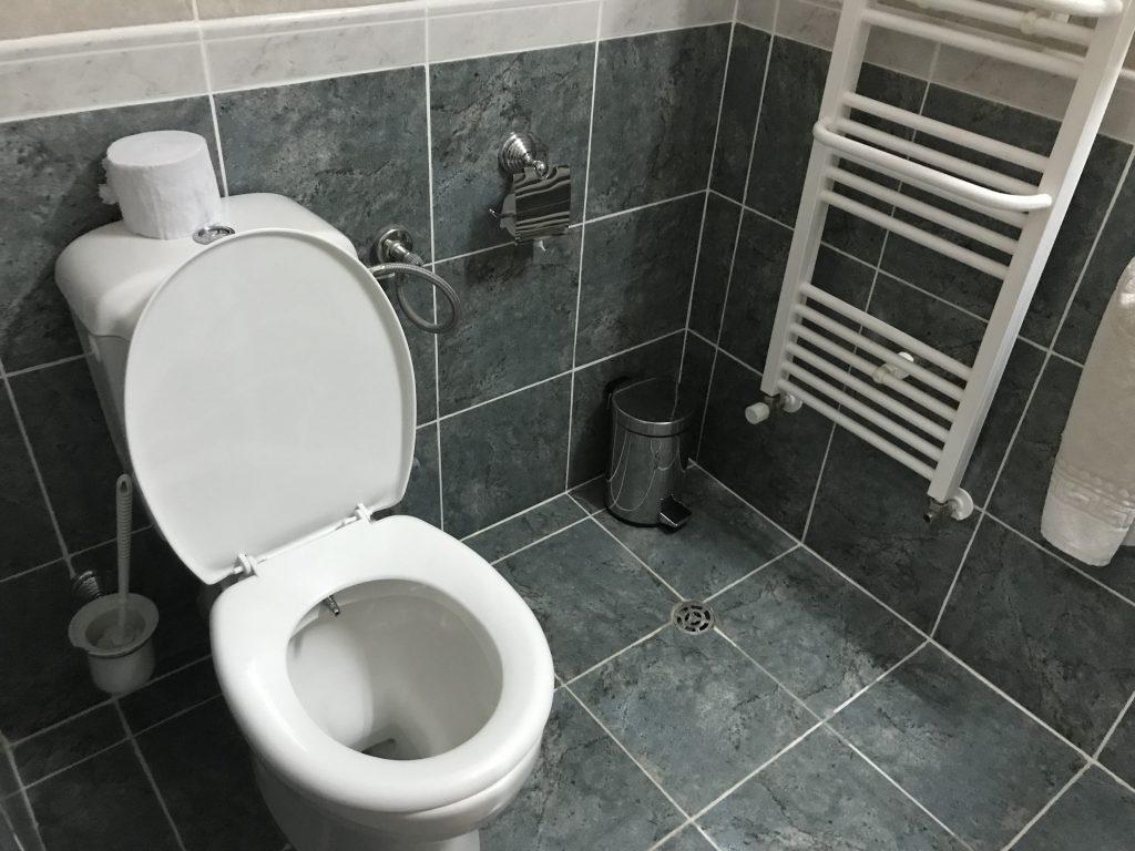 ホレズムパレス トイレ