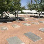 未来に繋ぐ種!ウズベキスタンのタシケント日本人墓地とナヴォイ劇場