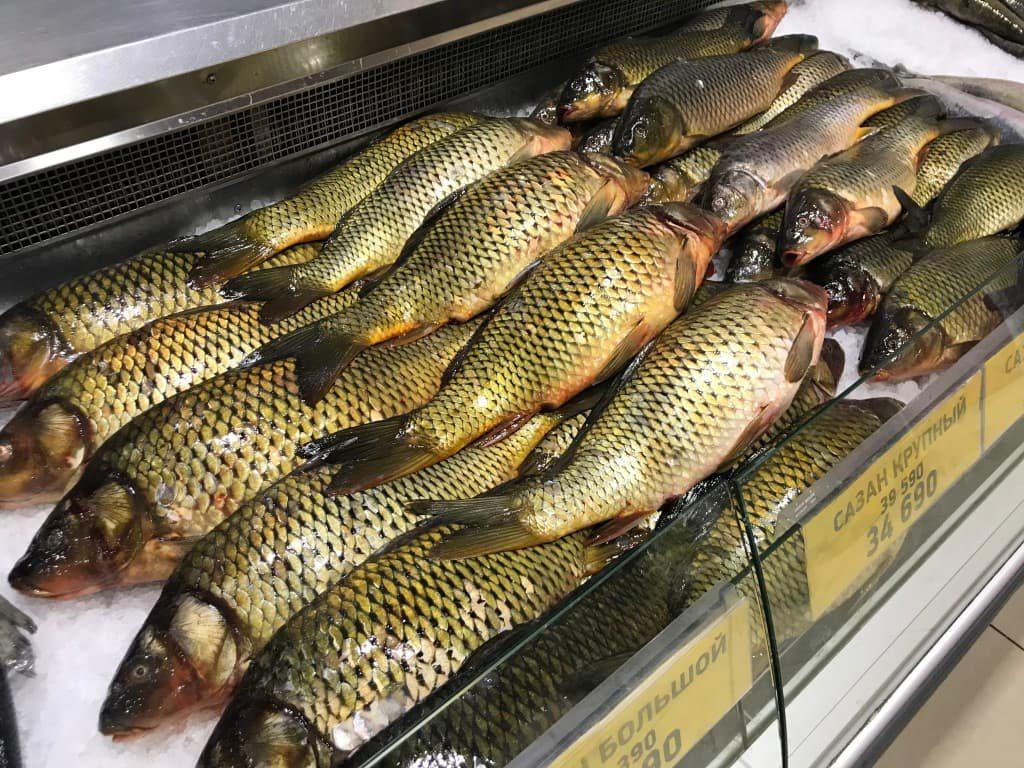 ウズベキスタン スーパーマーケット 魚