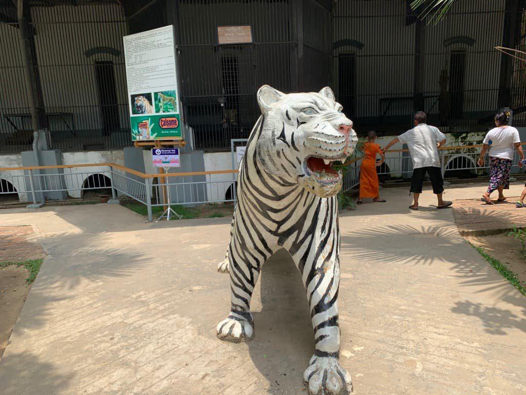 ヤンゴン動物園 ホワイトタイガーエリア