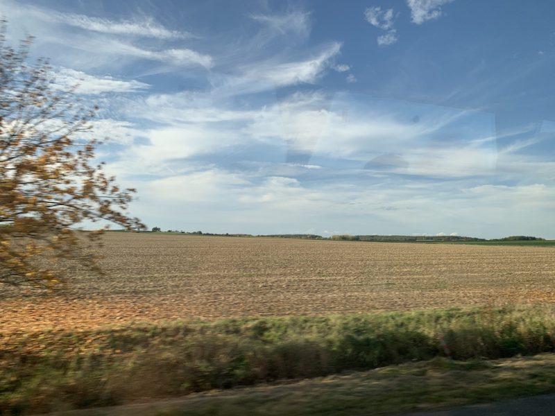チェコ  畑