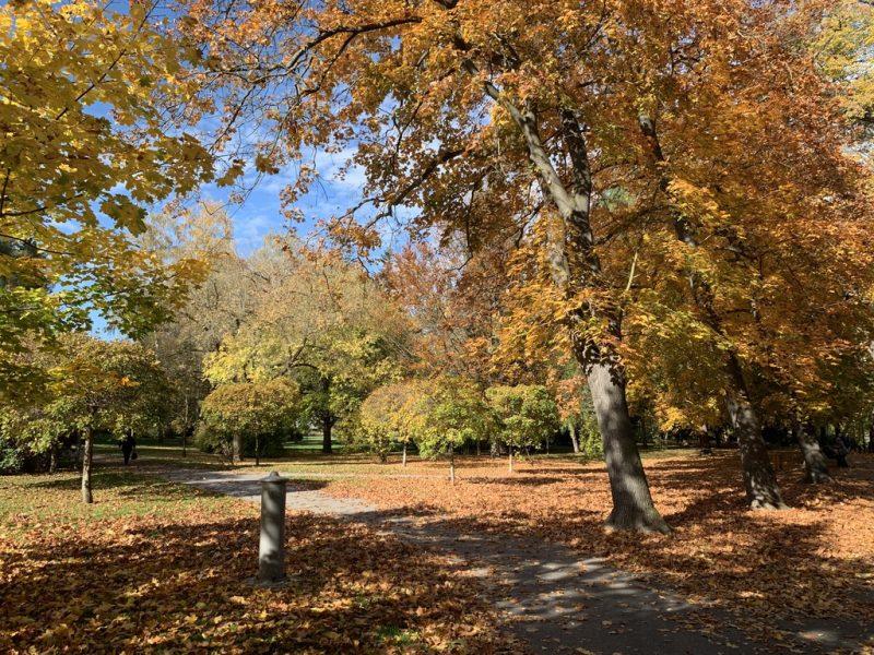 チェスキークルムロフ 公園