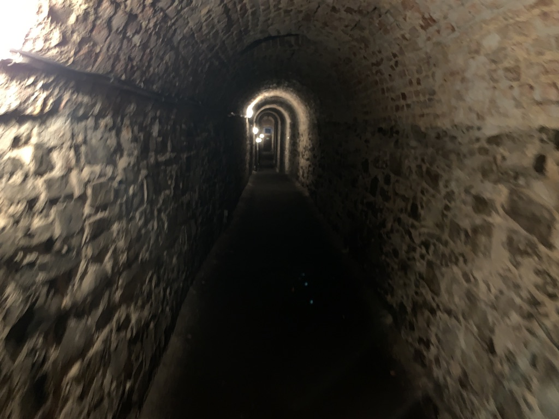 ヴィシェフラット城壁内部